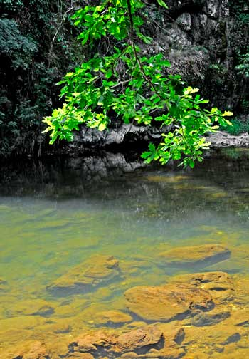 Rivière Viaur