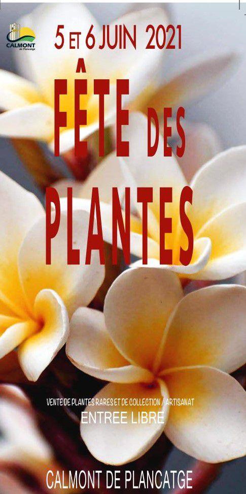 4831 fete plantes calmont 600x1203 2